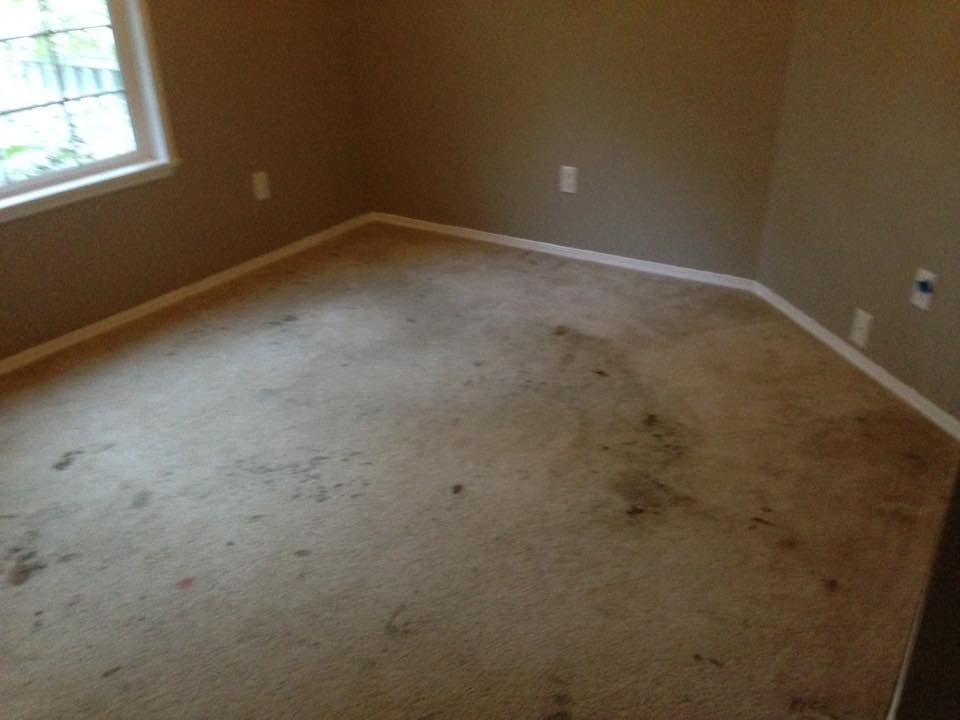 room with dirty carpet